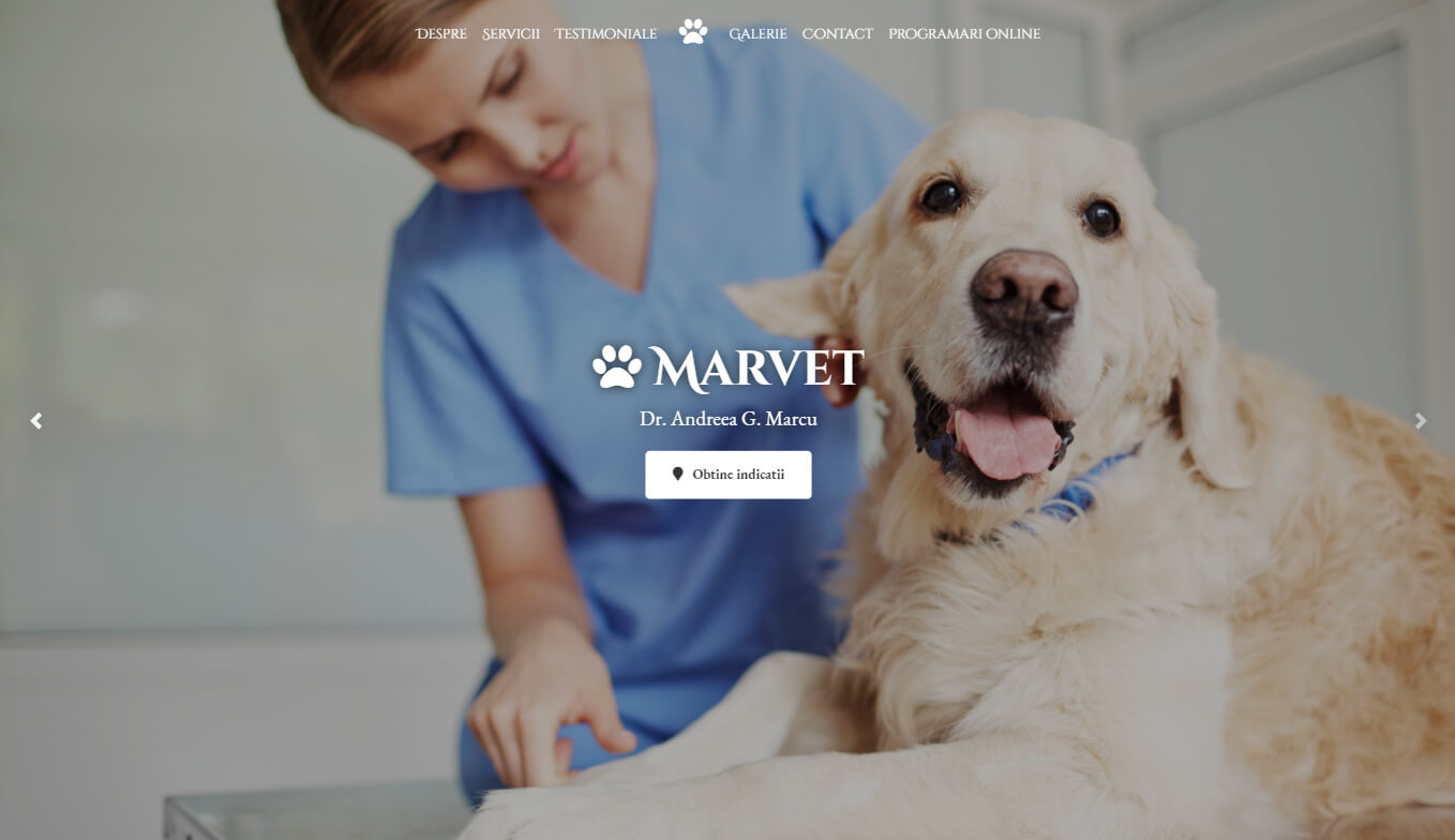 Creare website cabinet veterinar